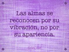 Las almas se reconocen por su vibración, no por su apariencia.