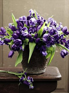 violet tulips and sweet peas