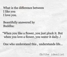 """""""When you like a flower, you just pluck it. But when you love a flower, you water it daily. One who understands this, understands life. -Buddha"""