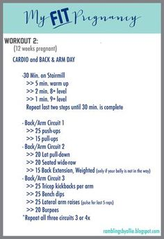 Fit Pregnancy. First Trimester Workout. Pregnant Back and Arm Workout Routine , Circuit by Ramblings by Allie