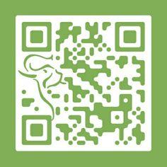 lettore qr code online