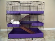 home made looking cages... found on CL available online