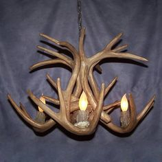 Canadian Antler CSR-71 4 Light Reproduction WhiteTail Chandelier  Great for intimate spaces, this chandelier will be the perfect accent piece. ,