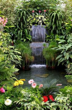 Tropical garden Ideas, tips and photos. Inspiration for your tropical landscaping. Tropical landscape plants, garden ideas and plans. Tropical Backyard Landscaping, Pond Landscaping, Ponds Backyard, Garden Pool, Backyard Waterfalls, Backyard Ideas, Modern Backyard, Large Backyard, Lush Garden