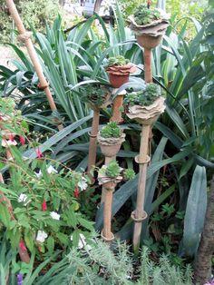Jardin Fleurs de poterie Plus
