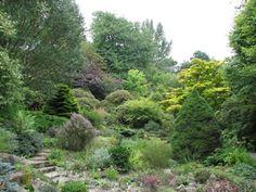 Branklyn Garden, Perth, Scotland