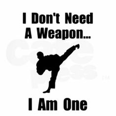 Are you searching for mixed martial arts Brooklyn? Amerikick martial arts offer boxing, karate, gymnastics and other fitness programs.
