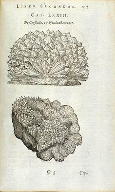 Boodt, Anselmus Boëtius de, Gemmarum et Lapidum Historia, 1647