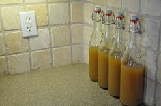 fermented lemonade. I want to try more fermented foods-this sounds tasty.