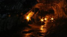 Explore the cavernous interior of the Big Island's Thurston Lava Tube.