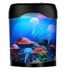 Spirited Luxury Betta Siamese Fighting Fish Mirror Finish Fishtank Aquarium Show Piece The Latest Fashion Aquariums & Tanks