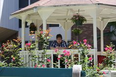 The gazebo was filled with lovely plants as onlookers enjoyed the ambiance of spring!