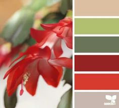 { flora hues }