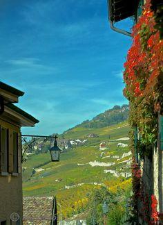 St. Saphorin, Vaud, Switzerland.