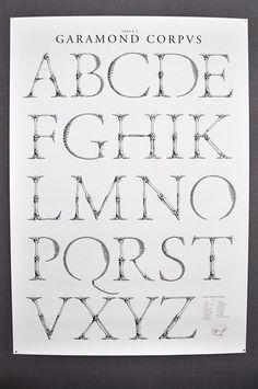 Garamond Corpus Alfabetet poster (font made of bones)