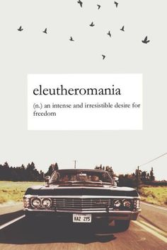 Eleutheromania; an intense or irresistable desire for freedom