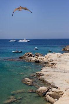 isole Tremiti, Cretaccio - TREMITI