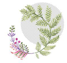 pixel77-tutorial-remove-backgrounds-result
