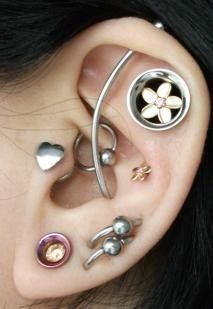 "outer conch…7/16""Plumeria eyelets (anatometal ) ..."