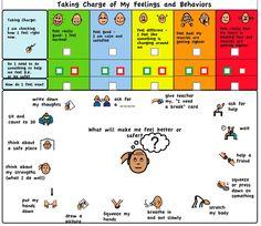 Self Regulation Chart