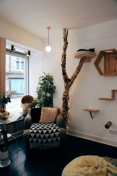The 6 Sheffield Cafes You'll Never Want To Leave – UK – Sabine We – Cat playground outdoor Cat Wall Shelves, Diy Cat Tree, Cat Playground, Cat Cafe, Cat Room, Cat Decor, Pet Furniture, Diy Stuffed Animals, Crazy Cats