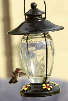 Best Glass Hummingbirds Feeder in Dark Bronze by TheBirdLoversNest