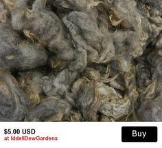 100% Natural grey, Romney wool locks, Iron Water Ranch, Albany, Oregon, PNW Soft and Buttery, D1