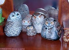 ..A family of painted owl rocks...This was my favorite subject when I painted on rocks in the 70's...attended Craft Shows all over NY state.