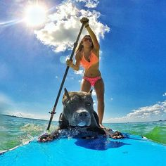 How about a furry SUP buddy?