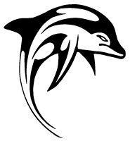Tribal dolphin tattoo
