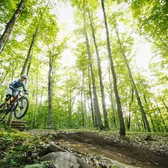 Camp-Fortune-Mountain-Biking-Gallery (38) Cross Country Mountain Bike, Mountain Bike Trails, Trail Running, Ottawa, Hiking, Camping, Explore, Mountains, Park