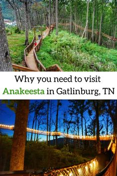 Why you need to visit Anakeesta in Gatlinburg, TN Located in the heart of downtown Gatlinburg, Tennessee, find out why Anakeesta is a great attraction for families and locals who desire a mix of adventure and relaxation. Gatlinburg Vacation, Tennessee Vacation, Gatlinburg Tn, Tennessee Camping, Tennessee Attractions, Gatlinburg Attractions, Roadside Attractions, Nashville Tennessee, Places To Travel