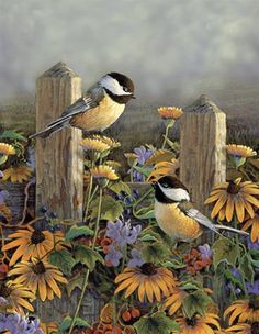 Chickadees and Black Eyed Susans Sam Timm