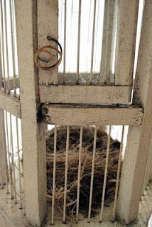 Bird Cage/Nest