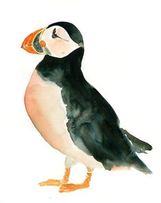 PUFFIN Original watercolor painting 8x10inch(Vertical orientation) on Etsy, $35.00