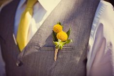 Buttonhole Ideas for Grooms   The Wedding Community