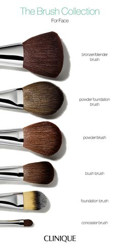A guide to makeup brushes for face.