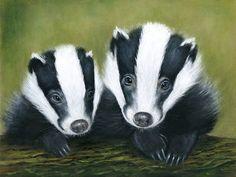 Badger Couple - giclee print