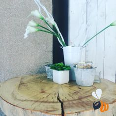 Tutti i #bar dovrebbero avere tavolini in tronco e #calle bianche!  lavorare in queste #location è più piacevole! #buongiorno #goodmorning #flowers #white #tree #breakfast #sweet #lovely #placetobe #work #agencylife #webdesign #webmaster #strategy #marketing #logo #design #follow #picoftheday #bestoftheday #phooftheday #igersmilano #milano #milan #womboit