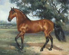 Poema :: Woodsong Institute of Art :: Horse Painting