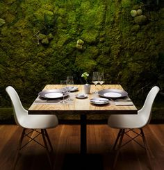 Chilewich original designs for tabletop and floor  love the moss wall!!