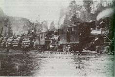 West Virginia Railroad Towns | Logging train of DanaLumber Company near Gray's Branch Circa 1900