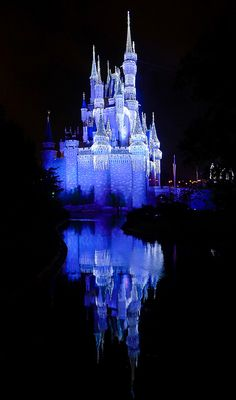 Cinderella's Castle reflection at Christmas