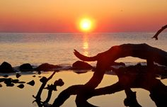 Beach Sunrise Fine Art Nature Photo by LifesongArtandPhoto on Etsy, $7.00