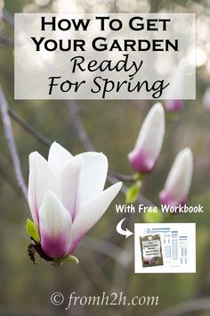 How To Get Your Garden Ready For Spring | Itching to get out in the garden but it's too early to start planting? There is still a lot you can do! Find out how to get your garden ready for spring.  Plus get a free workbook to help you get everything done! http://www.fromh2h.com/get-your-garden-ready-for-spring/