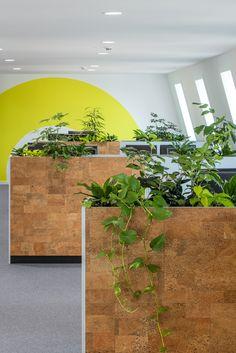 Indoor Garden Office and Office Plants Design Ideas For Summer 29 Office Screens, Office Room Dividers, Indoor Garden, Indoor Plants, Best Office Plants, Innovative Office, Green Office, Innovation, Workplace Design