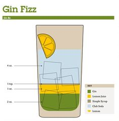 Mix Drink Cocktail Guide - Gin Fizz