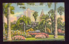VIEW FROM BAYFRONT PARK MIAMI FLORIDA Vintage Postcard | eBay