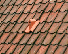 Birdhouse Roof Tiles by Klaas Kuiken
