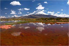 Parinacota as seen from beautiful Laguna Chungará